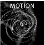 FIN_motion_pic3